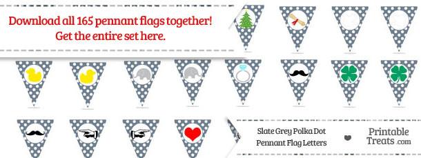 Slate Grey Polka Dot Pennant Flag Letters Download