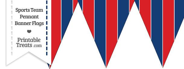 Bills Colors Pennant Banner Flag