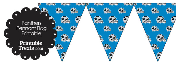Carolina Panthers Football Helmet Pennant Banners
