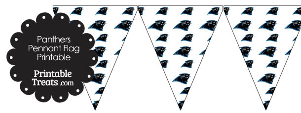 Carolina Panthers Logo Pennant Banners
