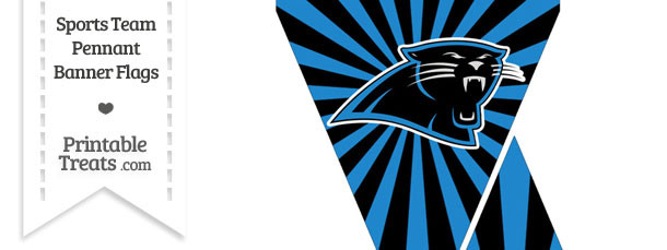 Carolina Panthers Mini Pennant Banner Flags