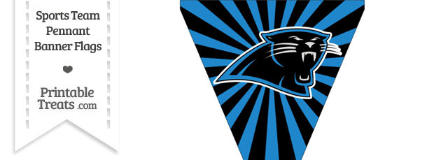 Carolina Panthers Pennant Banner Flag