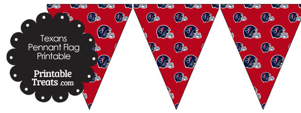 Houston Texans Football Helmet Pennant Banners