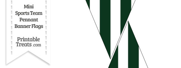 Jets Colors Mini Pennant Banner Flags
