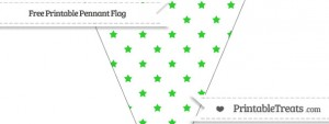 free-lime-green-star-pattern-simple-pennant-flag-to-print