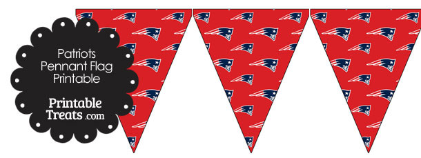 New England Patriots Logo Pennant Flags
