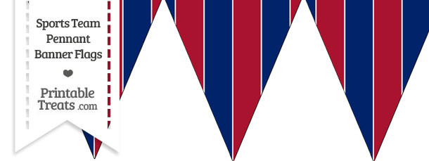 NY Giants Colors Pennant Banner Flag
