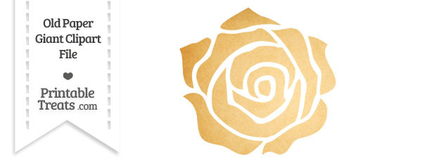 Old Paper Giant Rose Clipart