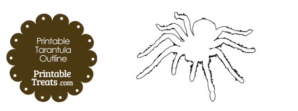 Printable Tarantula Outline