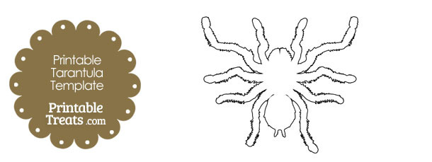 Printable Tarantula Shape Template