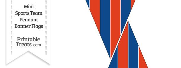 Rangers Colors Mini Pennant Banner Flags