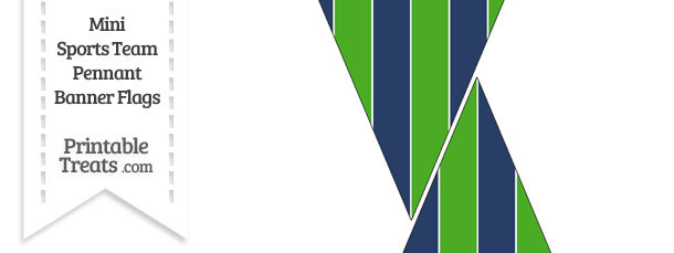 Seahawks Colors Mini Pennant Banner Flags