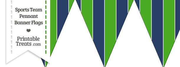 Seahawks Colors Pennant Banner Flag