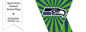 Seattle Seahawks Mini Pennant Banner Flags
