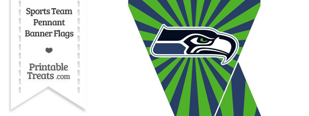 Seattle Seahawks Mini Pennant Banner Flags