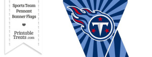 Tennessee Titans Mini Pennant Banner Flags