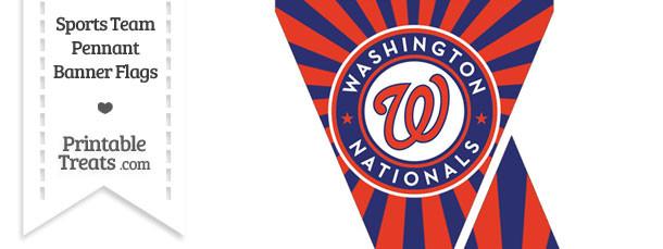 Washington Nationals Mini Pennant Banner Flags