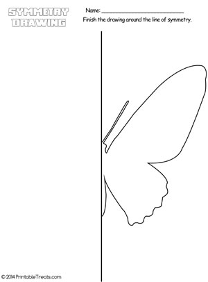 butterfly symmetry drawing worksheet printable. Black Bedroom Furniture Sets. Home Design Ideas