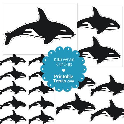 photograph regarding Whale Printable identify Printable Killer Whale Reduce Outs Printable