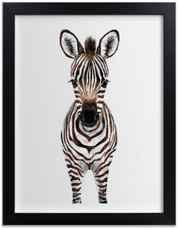 Baby Zebra Art Print for Gender Neutral Animal Theme Nursery