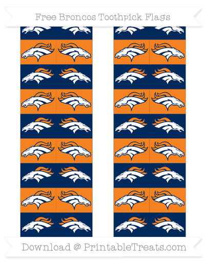 Broncos Toothpick Flags