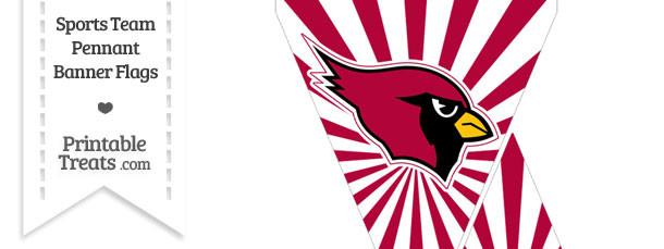 Arizona Cardinals Mini Pennant Banner Flags