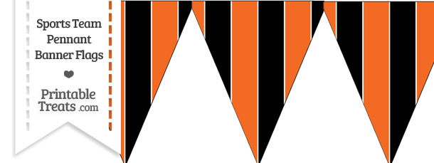 Bengals Colors Pennant Banner Flag