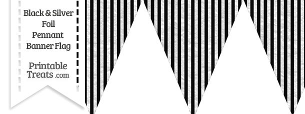 Black and Silver Foil Stripes Pennant Banner Flag