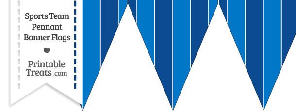 Blue Jays Colors Pennant Banner Flag