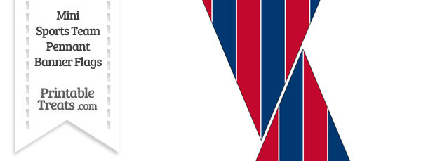 Braves Colors Mini Pennant Banner Flags