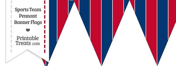 Braves Colors Pennant Banner Flag