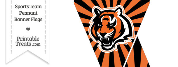Cincinnati Bengals Mini Pennant Banner Flags