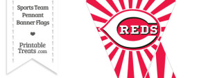 Cincinnati Reds Mini Pennant Banner Flags