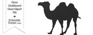 Clean Chalkboard Giant Camel Clipart