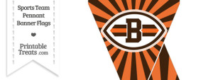 Cleveland Browns Mini Pennant Banner Flags