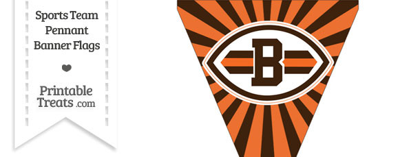 Cleveland Browns Pennant Banner Flag