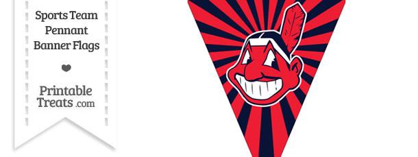 Cleveland Indians Pennant Banner Flag