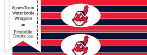 Cleveland Indians Water Bottle Wrappers