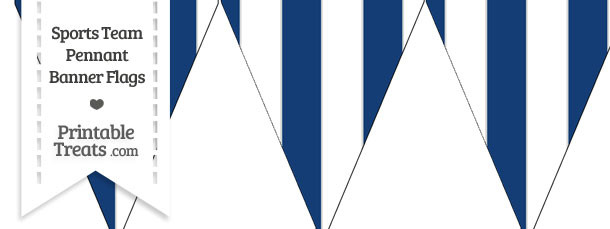 Colts Colors Pennant Banner Flag