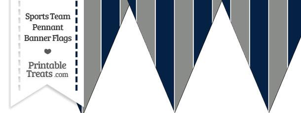 Cowboys Colors Pennant Banner Flag
