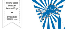Detroit Lions Mini Pennant Banner Flags