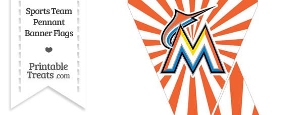 Florida Marlins Mini Pennant Banner Flags