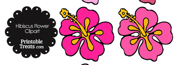 Hibiscus Flower Clipart in Shades of Pink