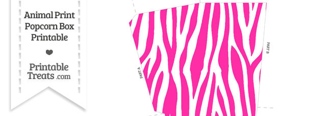 Hot Pink and White Zebra Print Popcorn Box