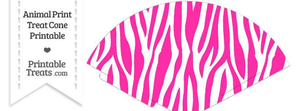 Hot Pink and White Zebra Print Treat Cone
