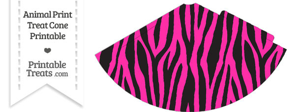 Hot Pink Zebra Print Party Cone