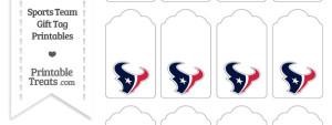 Houston Texans Gift Tags