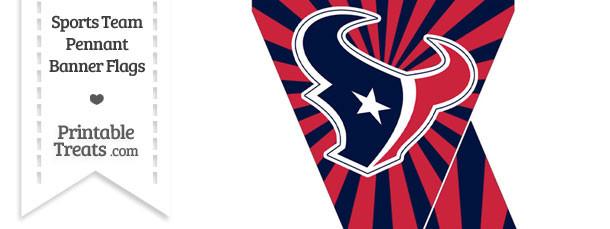 Houston Texans Mini Pennant Banner Flags