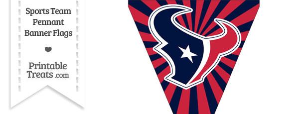 Houston Texans Pennant Banner Flag