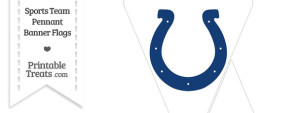 Indianapolis Colts Mini Pennant Banner Flags